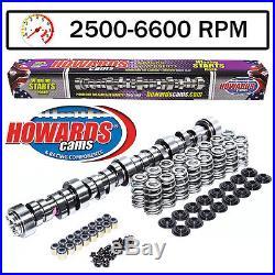 HOWARD'S GM LS1 Big Mama Rattler 282/290 625/625 109° Cam & Valve Springs Kit
